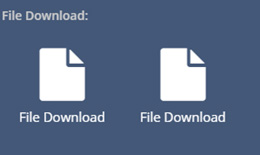 CIP File Download