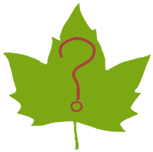 Leaf with question mark